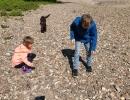 Steine-sammeln