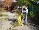 Gartenarbeit 006