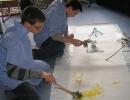 Malen mit Naturmaterialien